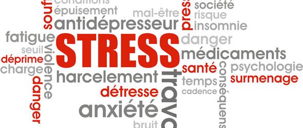 Les recommandations du CESE pour prévenir les risques psychosociaux