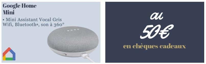 Google home mini ou chèques cadeaux